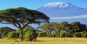 trek kilimandjaro tanzanie