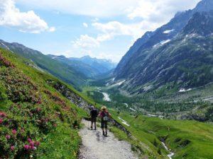 Sur les sentiers du Tour du Mont Blanc