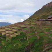 huchuy qosqo Trek Sud Pérou - jour 12