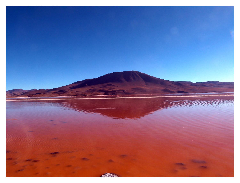 laguna colorada - trek en bolivie