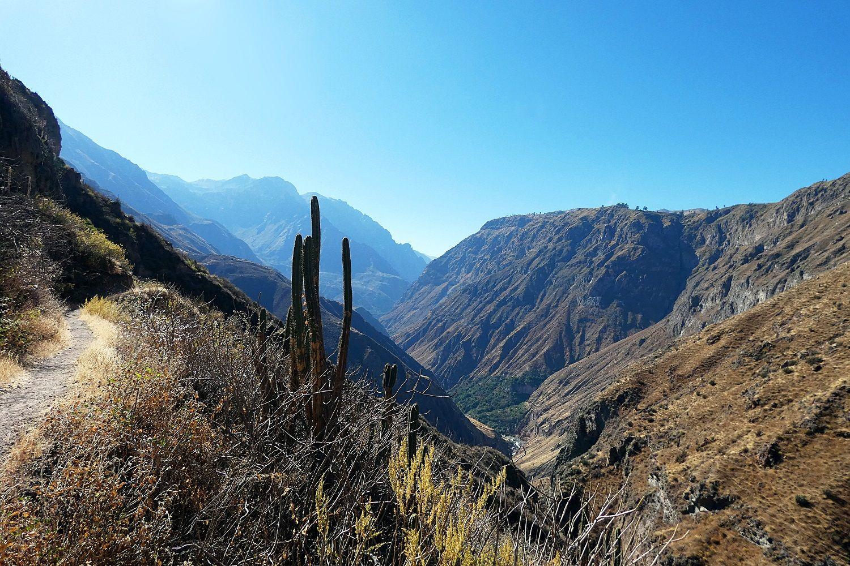 Trek-dans-le-Canyon-del-colca-Fure-et-Huaruro