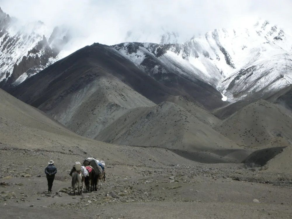 Sous le Stok La, lors d'un trek au Ladakh.