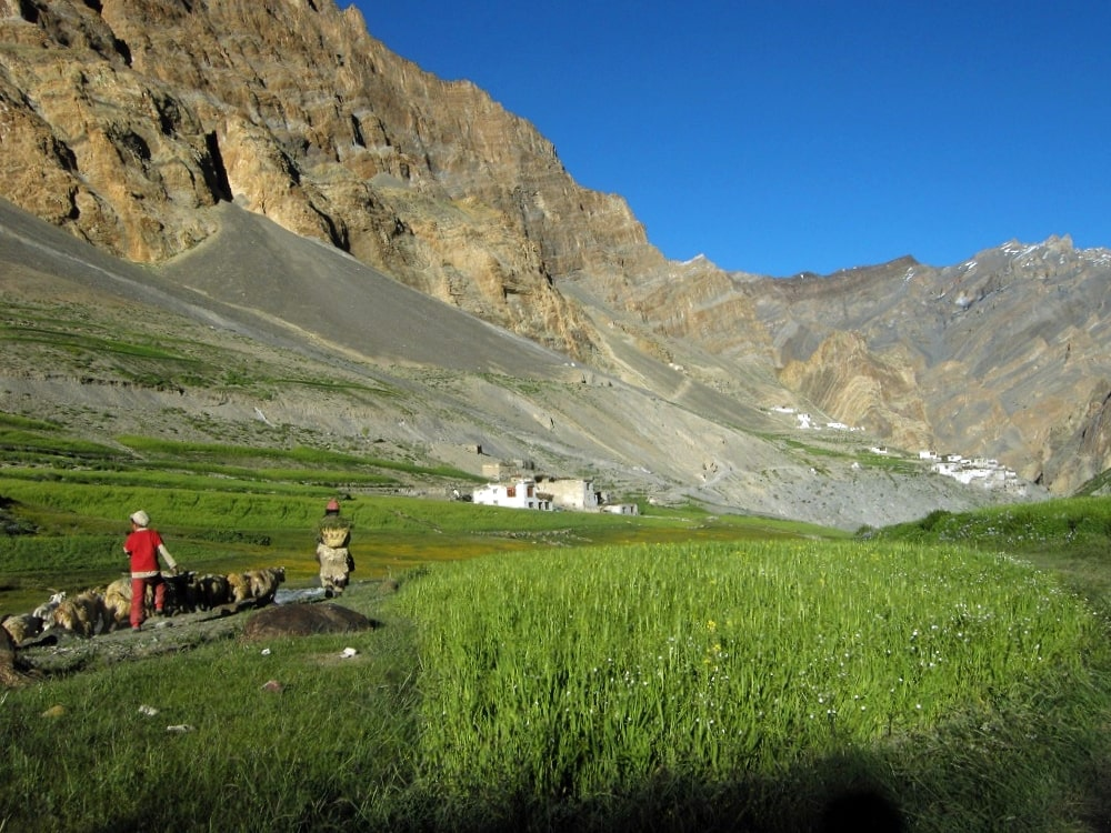 Village de Photokasar Zanskar