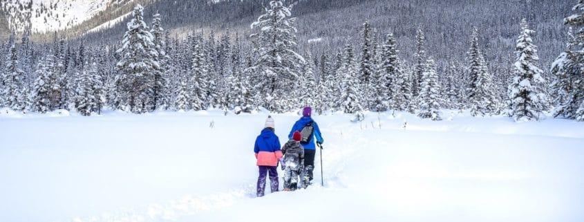 Comment commencer la randonnée en raquettes à neige ?