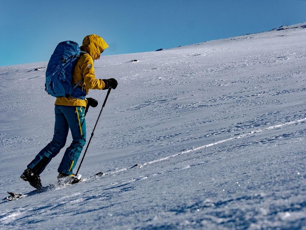 peaux de phoque montée ski rando