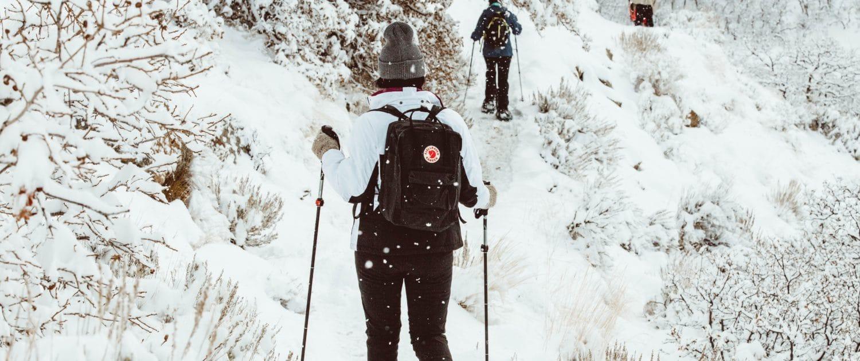 randonnée en raquettes sous la neige