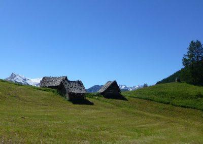 hute sur la plaine