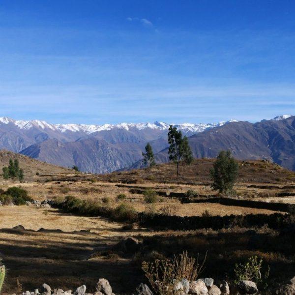 Grand sud du Pérou
