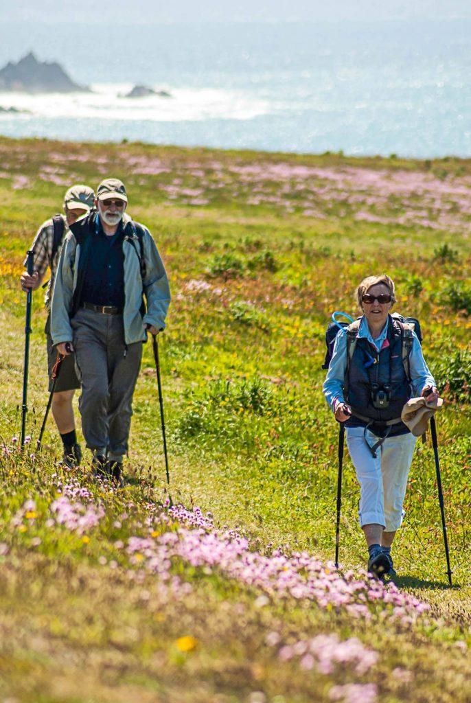 Pourquoi faire de la randonnée quand on est senior
